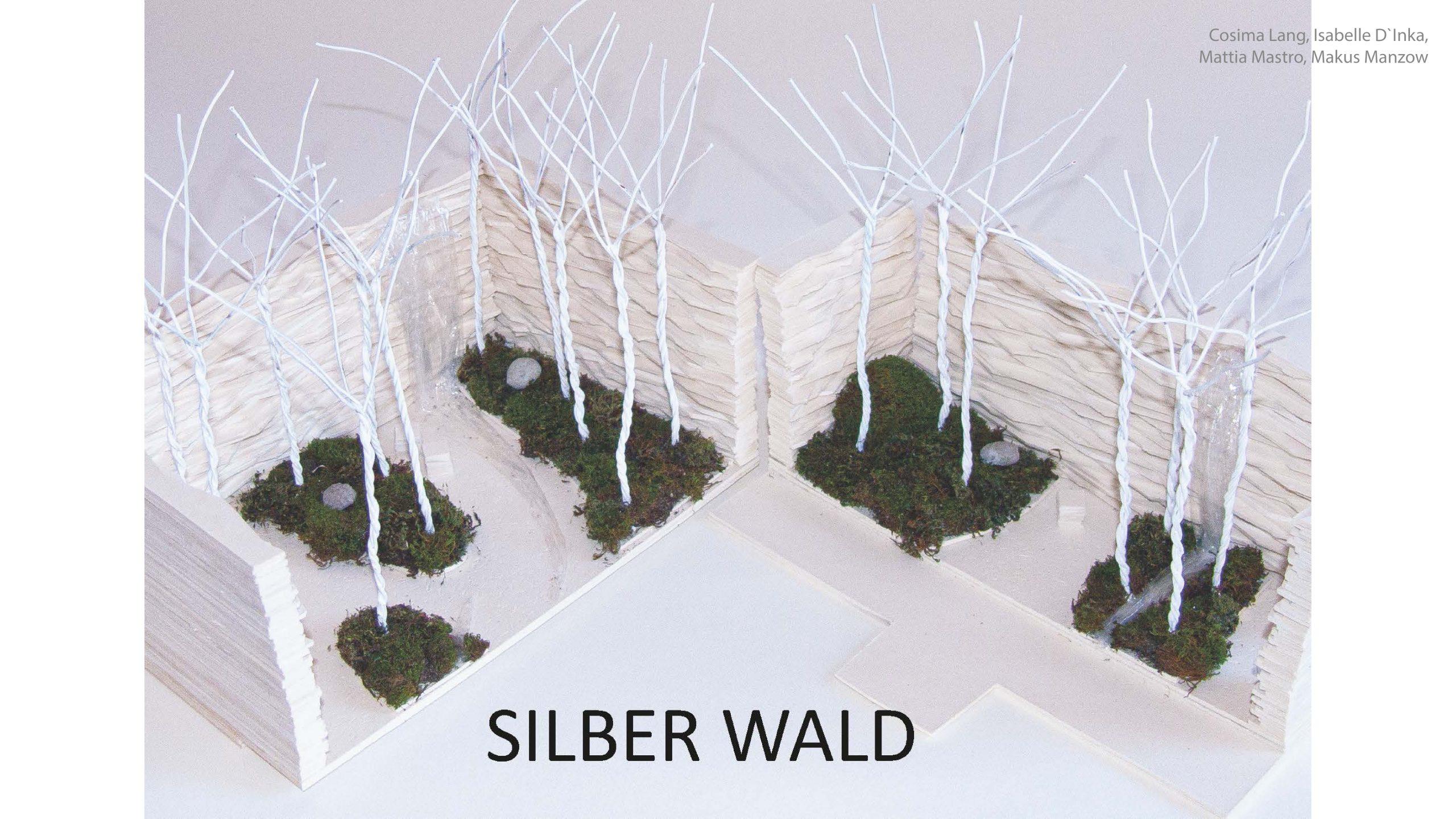 Silberwald 1