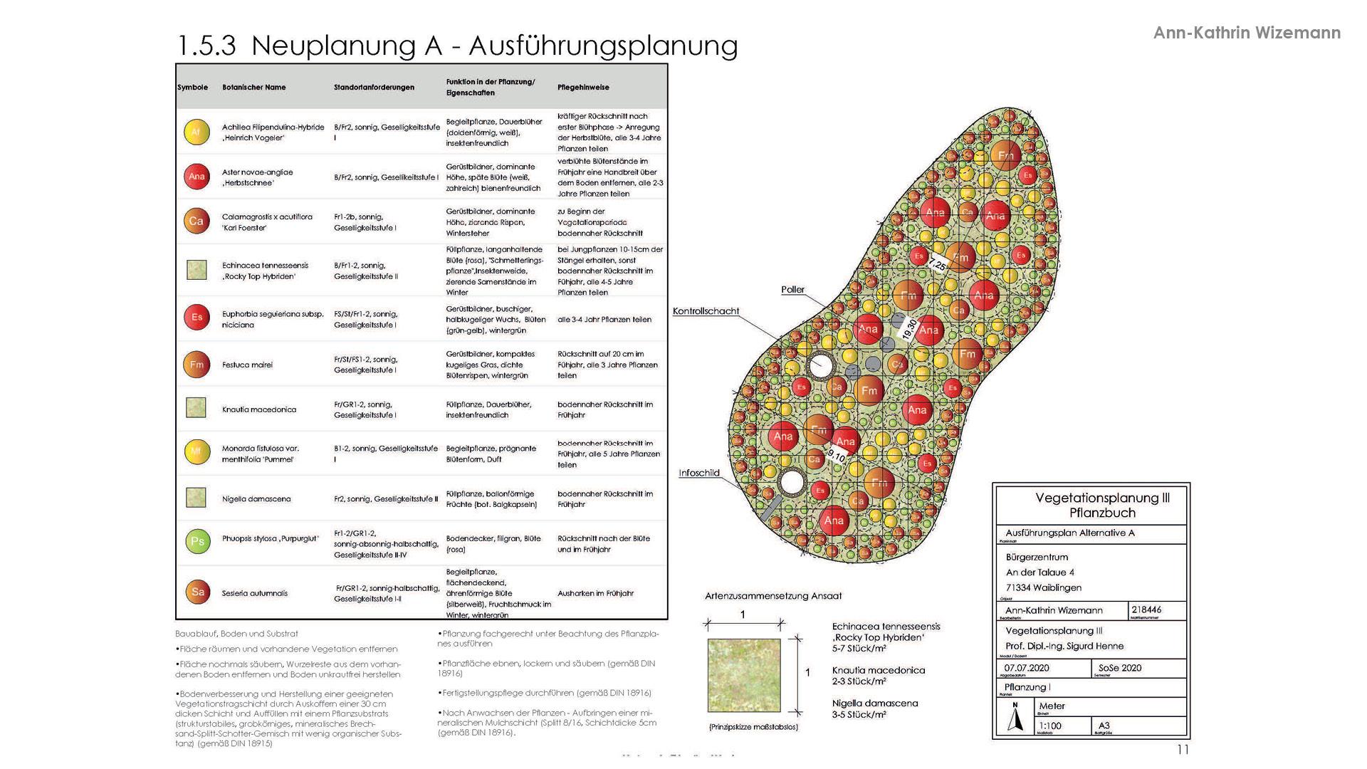 Vegetationsplanung 12