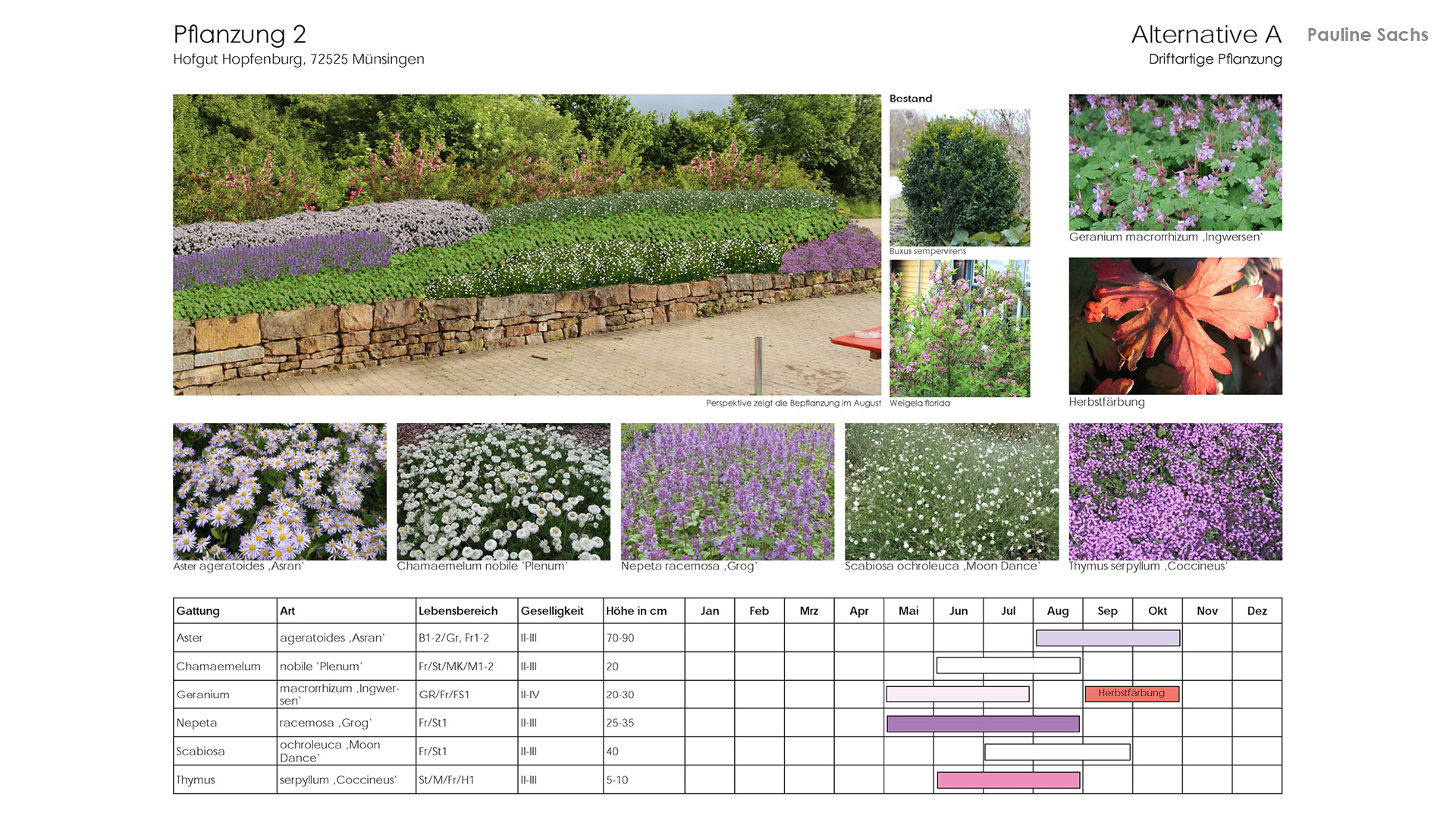 Vegetationsplanung 2