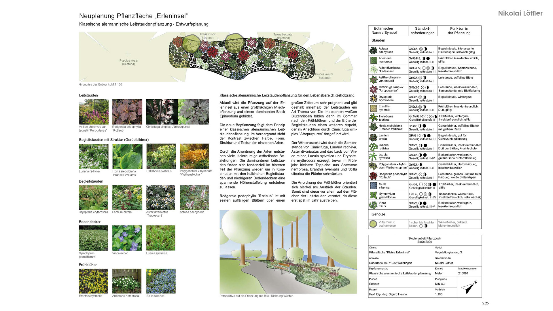 Vegetationsplanung 4
