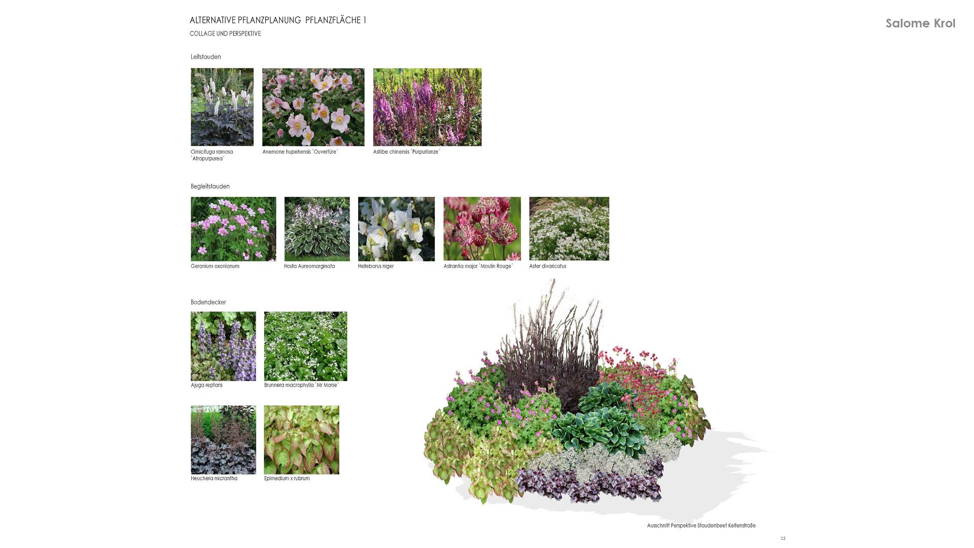 Vegetationsplanung 9